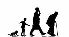 پاورپوینت بررسی رشد انسان در طول چرخه حیات